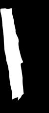 08-Capoeira-Men